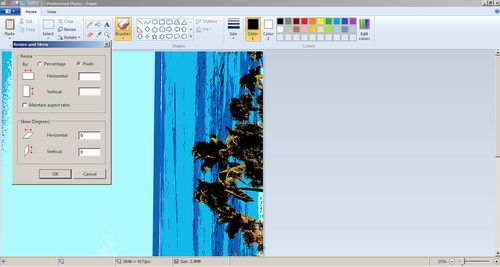 Paint screen capture