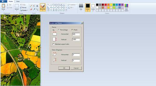 Paint screen capture