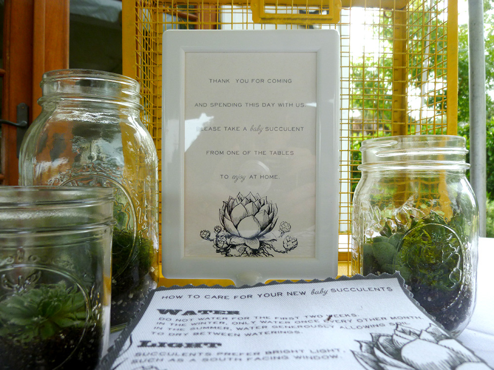 Diy Weddings Succulent Centerpieces Favors Spoonflower Blog