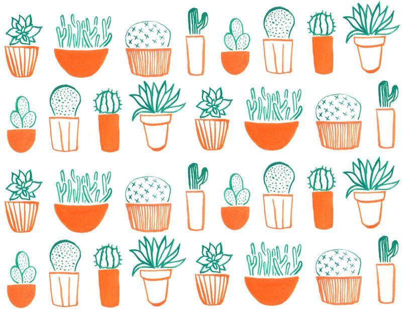 Cacti_wallpaper4_original_image