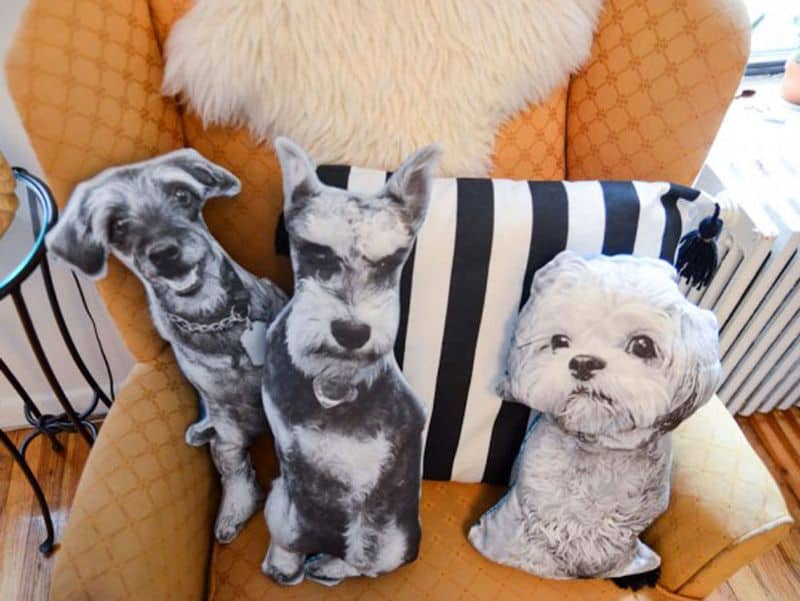 Dog_pillows