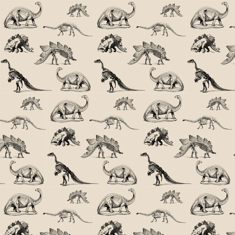 Museum-Animals,-Dinosaur-Skeletons