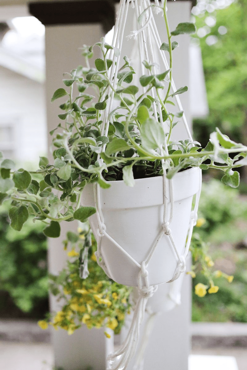 DIY Hanging Planter | A Beautiful Mess