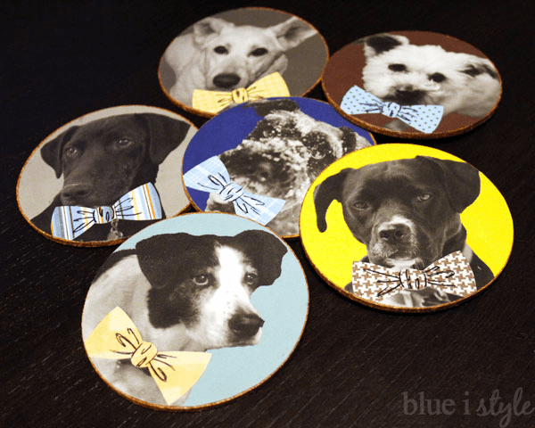 Debonair Dog Coasters DIY