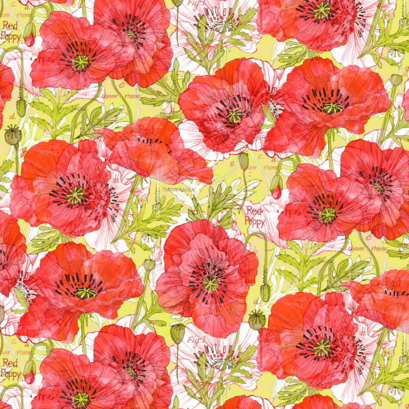 Romance Poppies, Robin's Fabric8 entry