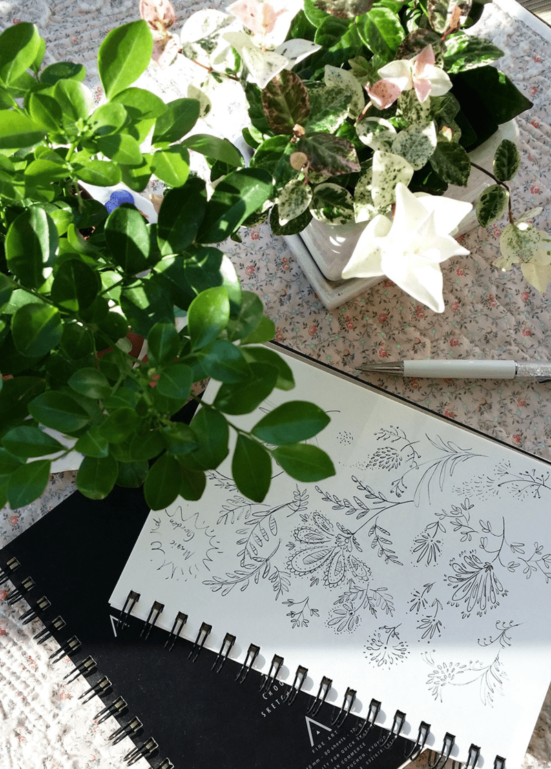 Catalina's sketchbook
