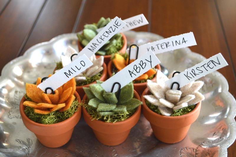 Mini Felt Succulent Cards