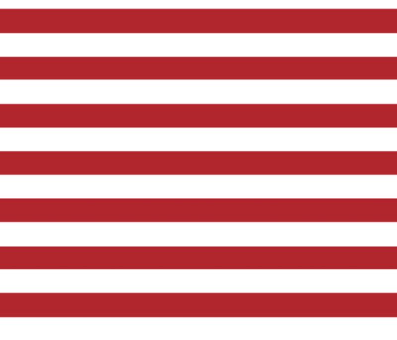 Stripes-Horizontal - ElsieLevelsUp