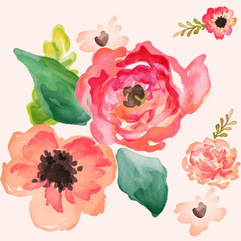 FloralDreams - Shopcabin
