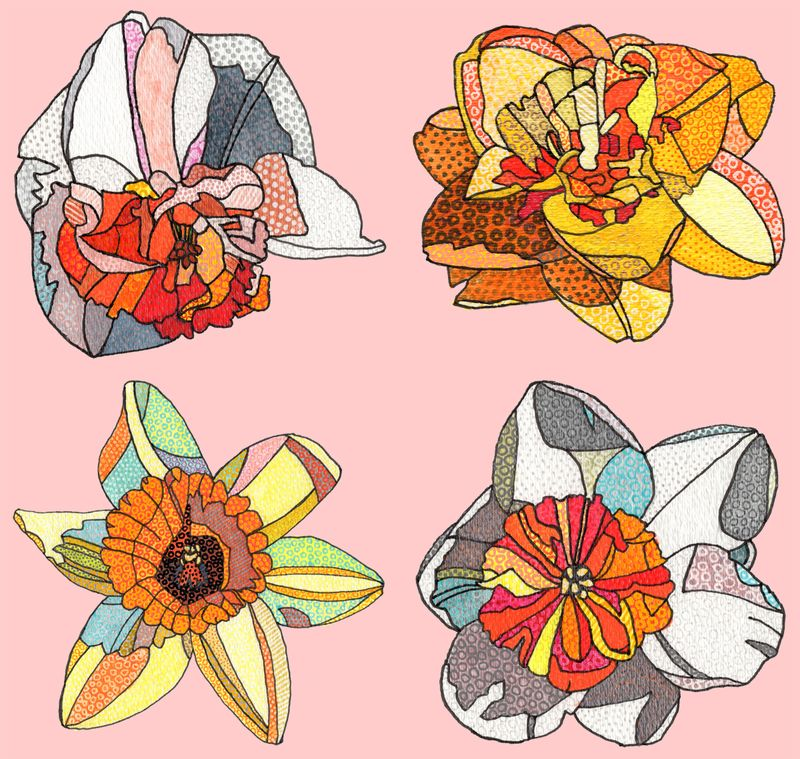 Daffodils-pink