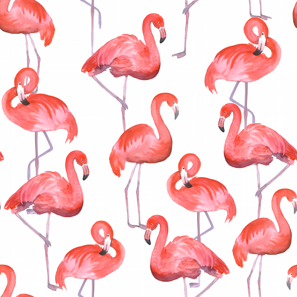 you u0026 39 ll love these flamingo designs
