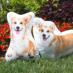 Queen Elizabeth II 90th birthday Corgi pillow