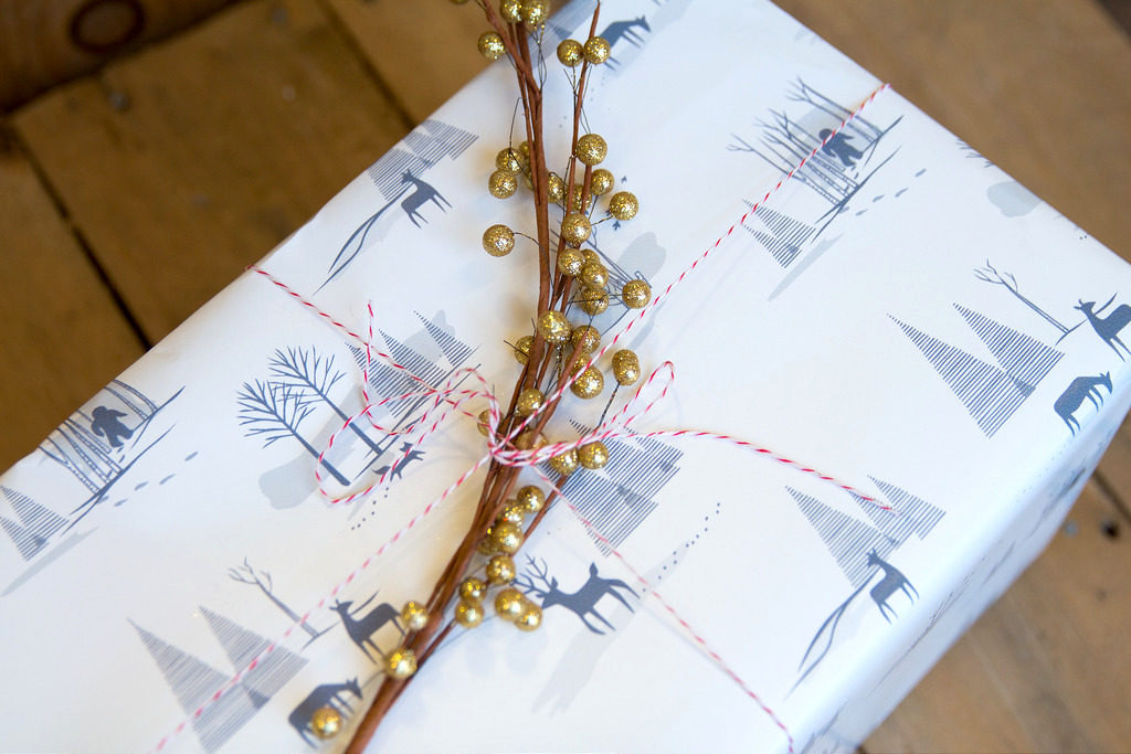 """gift box wrapped in """"Yeti Toile"""" by Chris Jorge"""