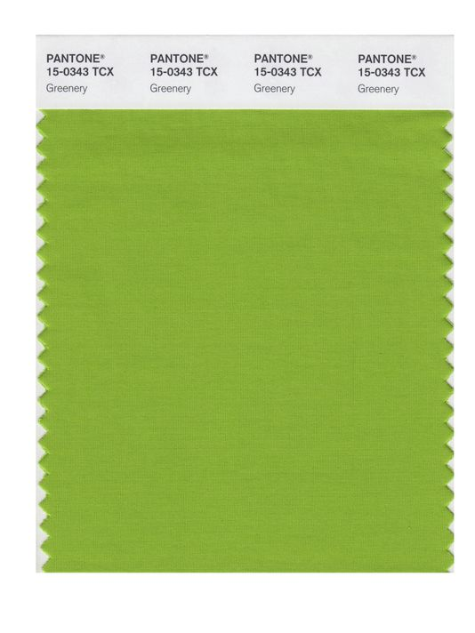 pantone-color-of-the-year Greenery. Image courtesy of the Associated Press