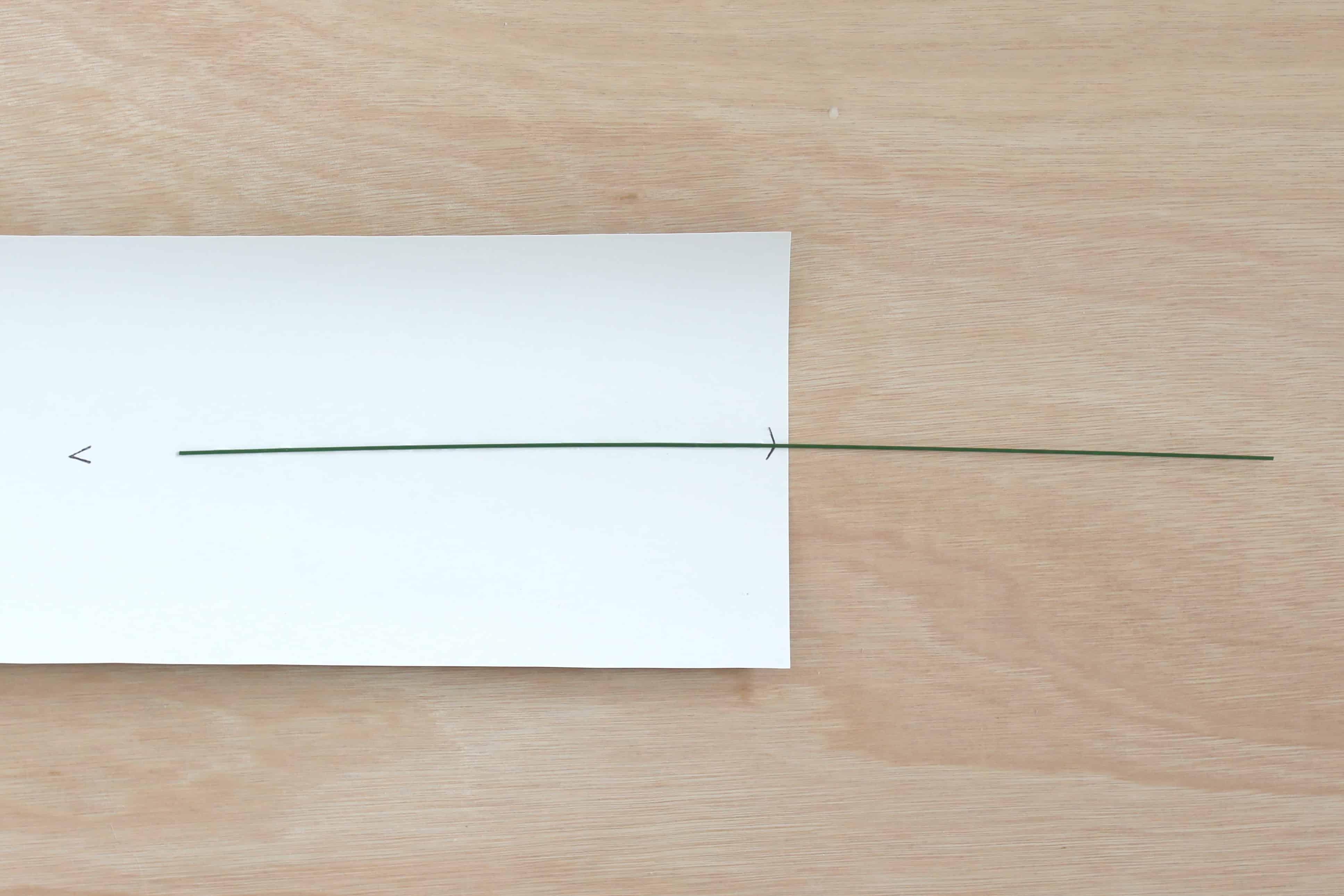 paper flower DIY rose instructions: creating the stem