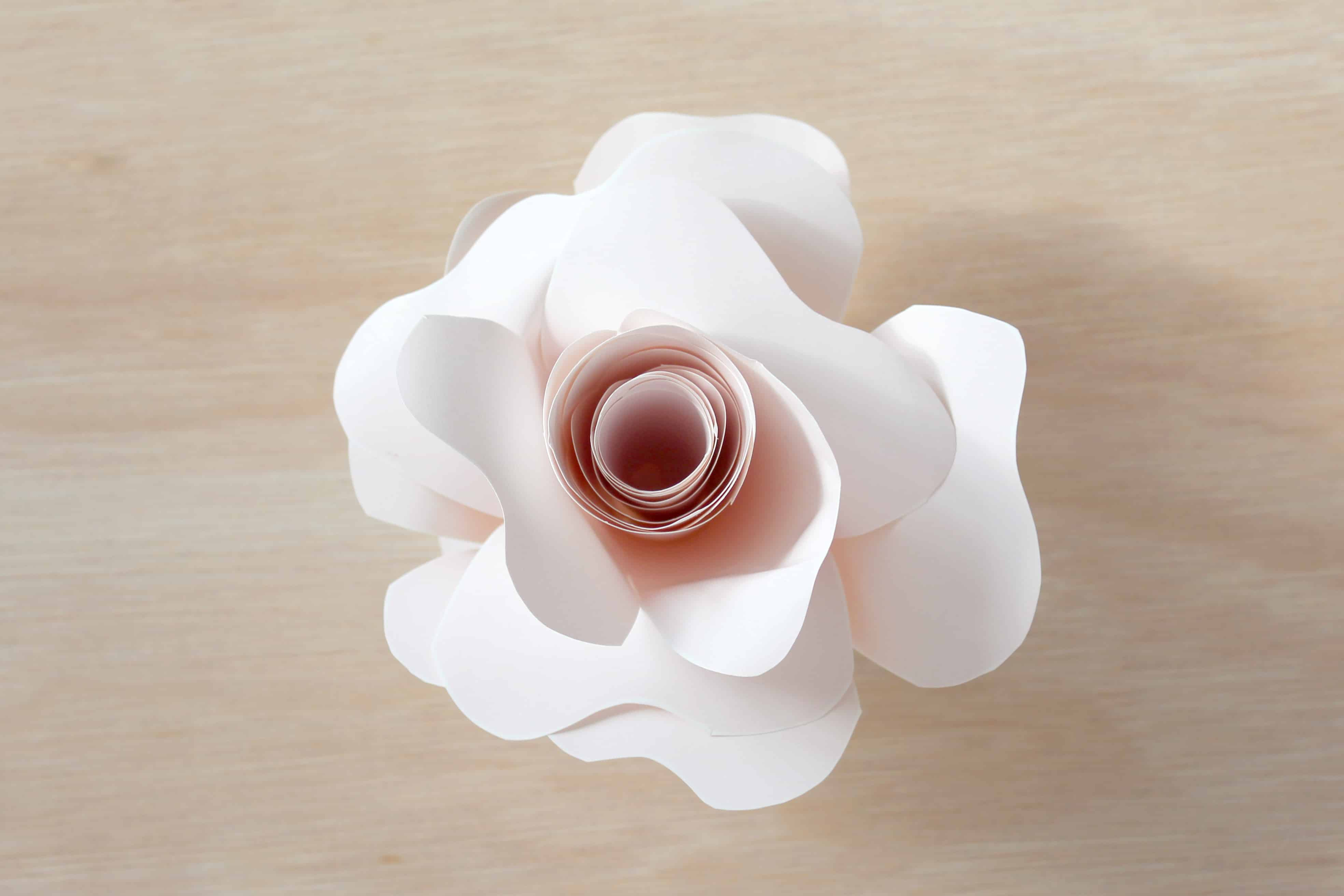 paper flower DIY rose instructions