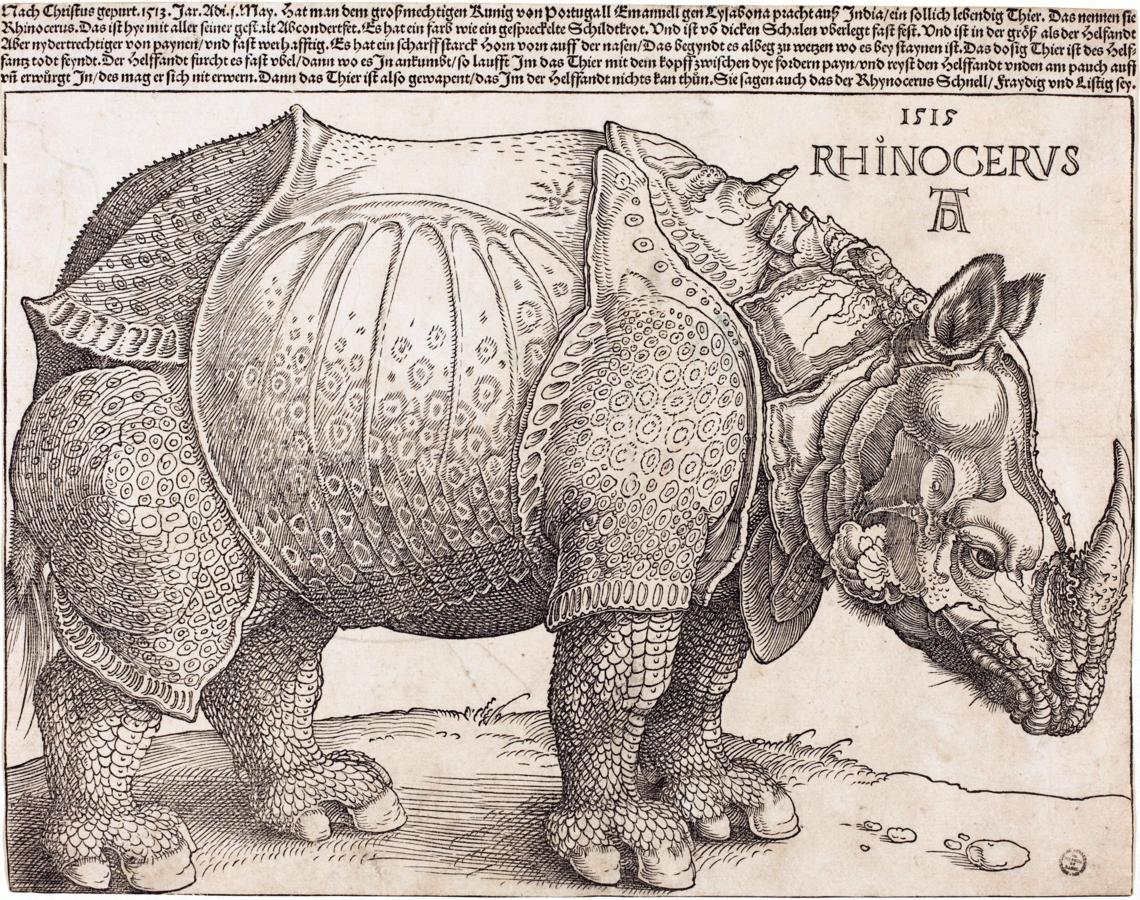 "Albrecht Dürer ""Rhinoceros"" | Spoonflower Blog"