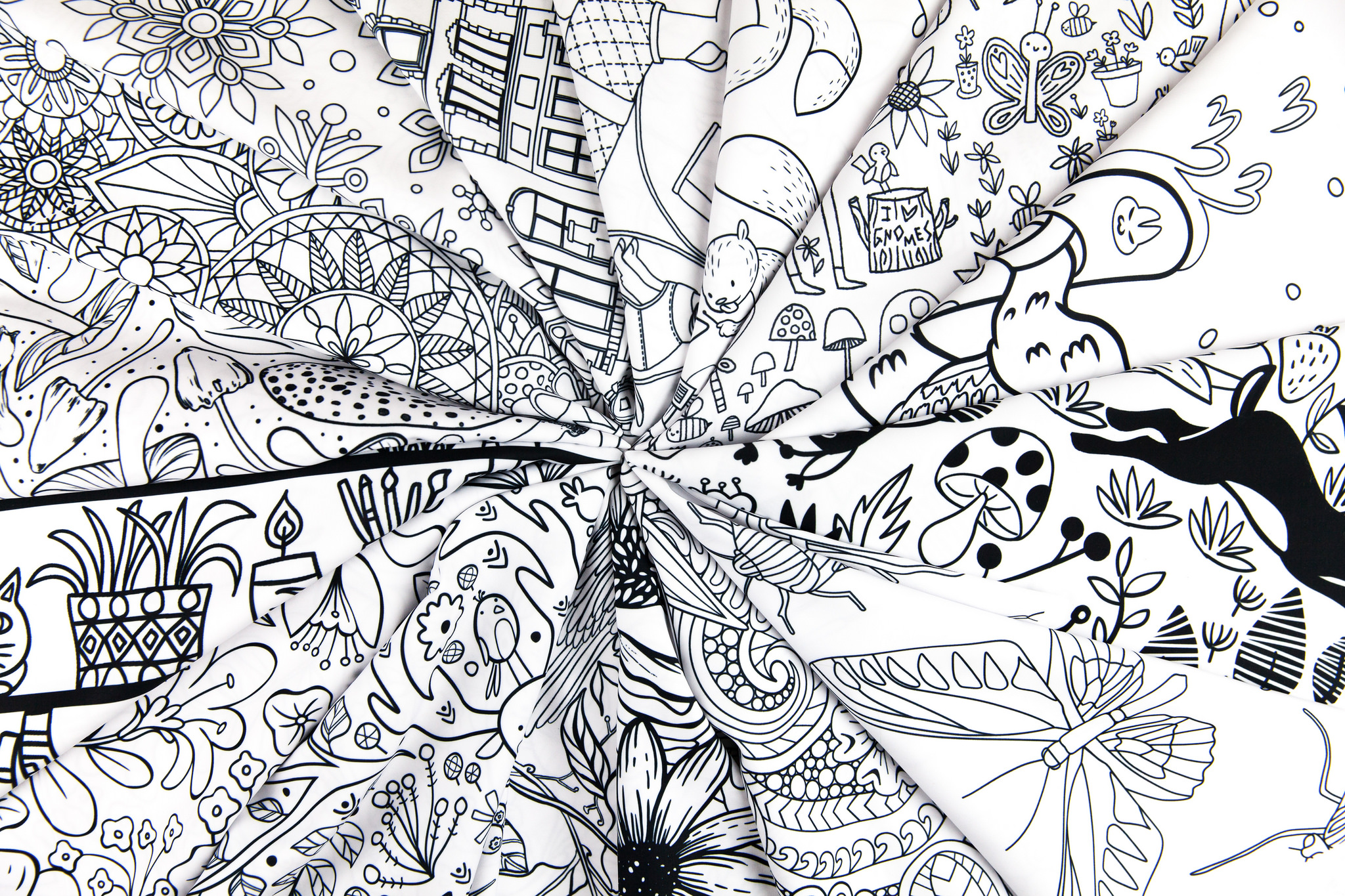 The Top 16 Lake Coloring Book Design Challenge Winners