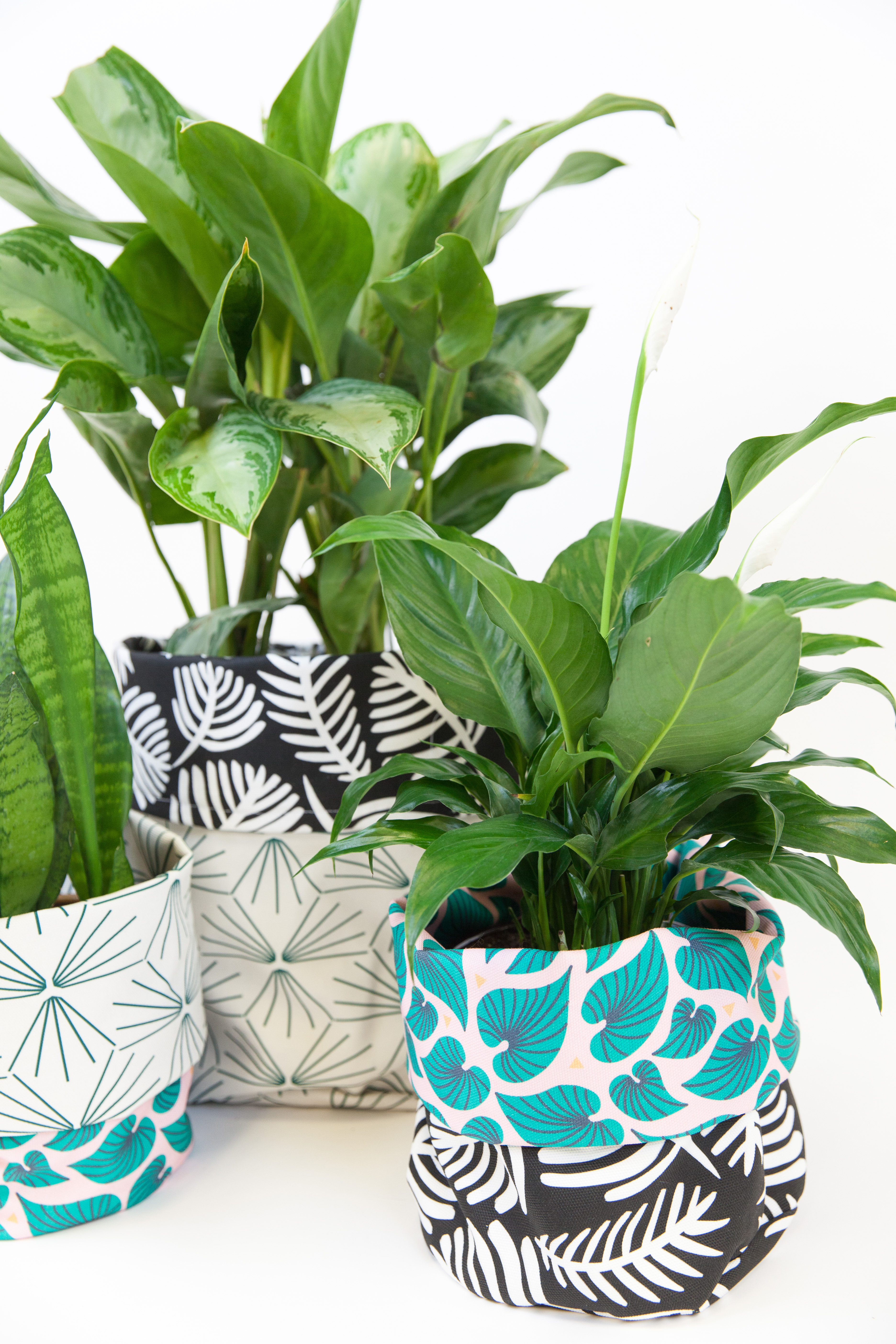 Brighten up Your Houseplants with DIY Fabric Planters | Spoonflower Blog