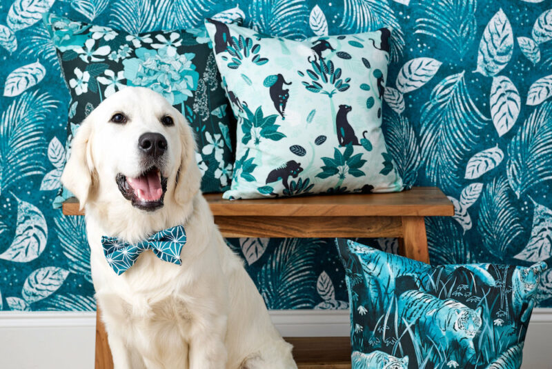 Dog in a handmade bow tie sitting in front of a teal wallpapered wall