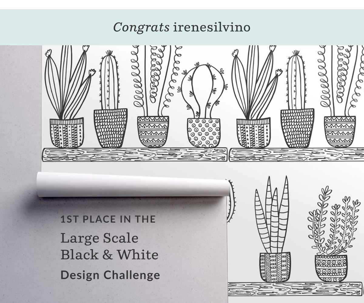 Prickly Cacti Succulents by irenesilvino is the Large Scale Black and White Design Challenge winner! | Spoonflower Blog