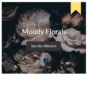 See the winners of the Moody Florals Design Challenge
