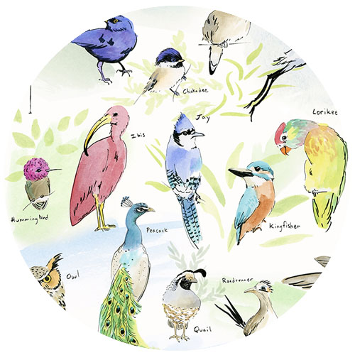 Alphabet of Birds  by ghouk | Spoonflower Blog