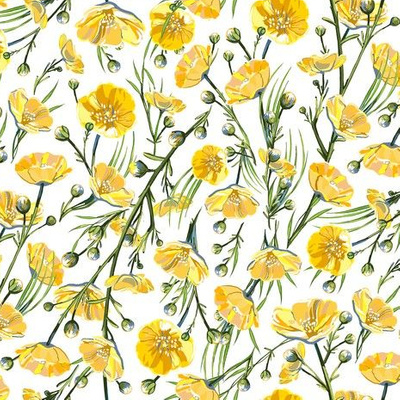 Small buttercups appear on a white background
